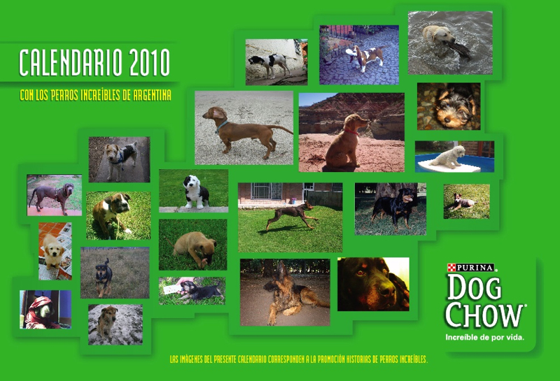 Perros Increíbles para todo el 2010