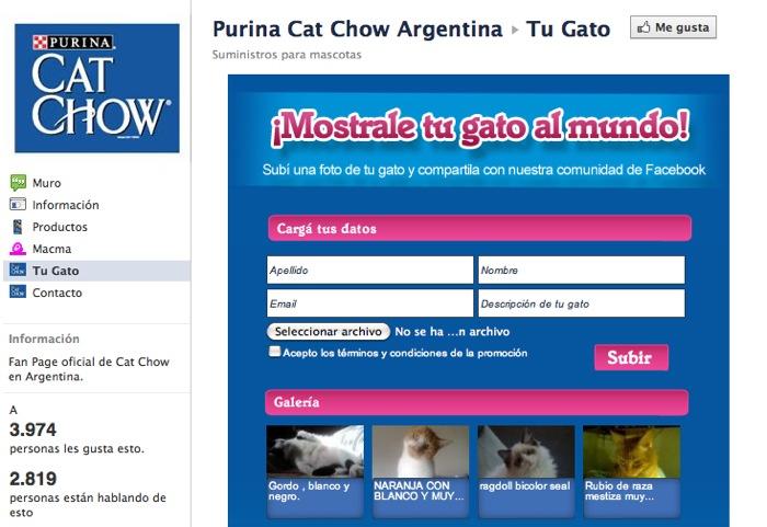Tab Tu Gato para que los usuarios compartan las fotos de sus mascotas.