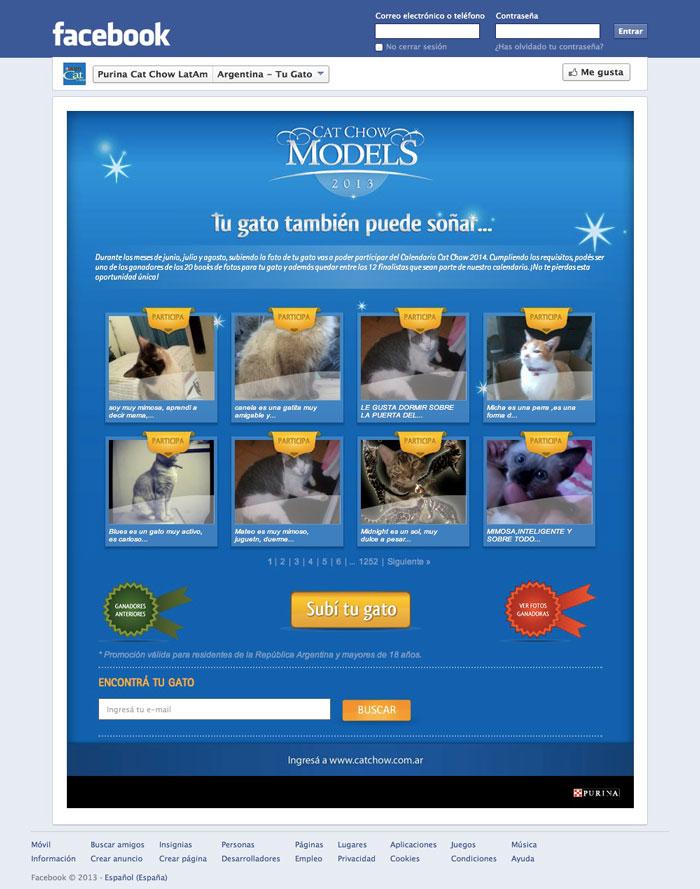 Homepage del tab de la segunda edición de Cat Chow Models.