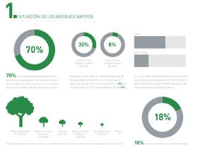 Infografías para entender más y mejor