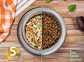 ¡La alimentación Essential para tu perro!